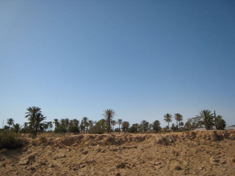 Tour Af Oen Djerba Tunesien Maltider Djerba Info Kort Fotos