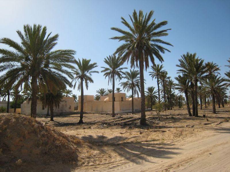 Tour De L U0026 39  U00eele De Djerba   Repas Tunisien